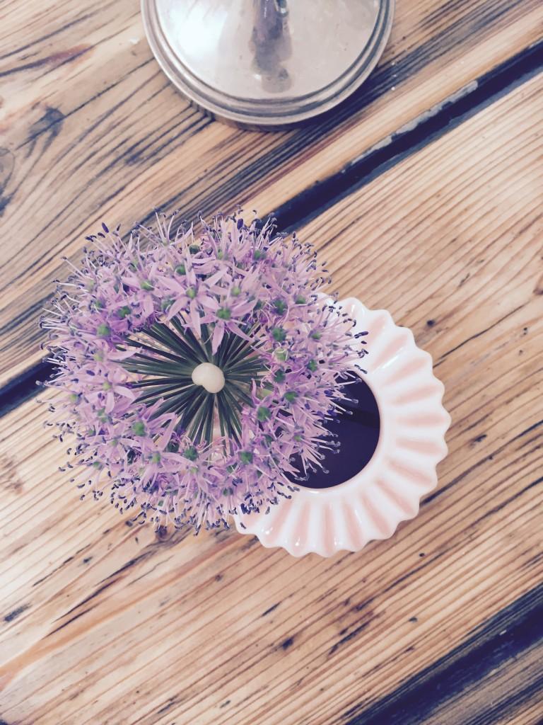 Zierlauch Vase anjiko