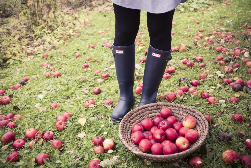 Äpfel blog.anjiko.com anja krause