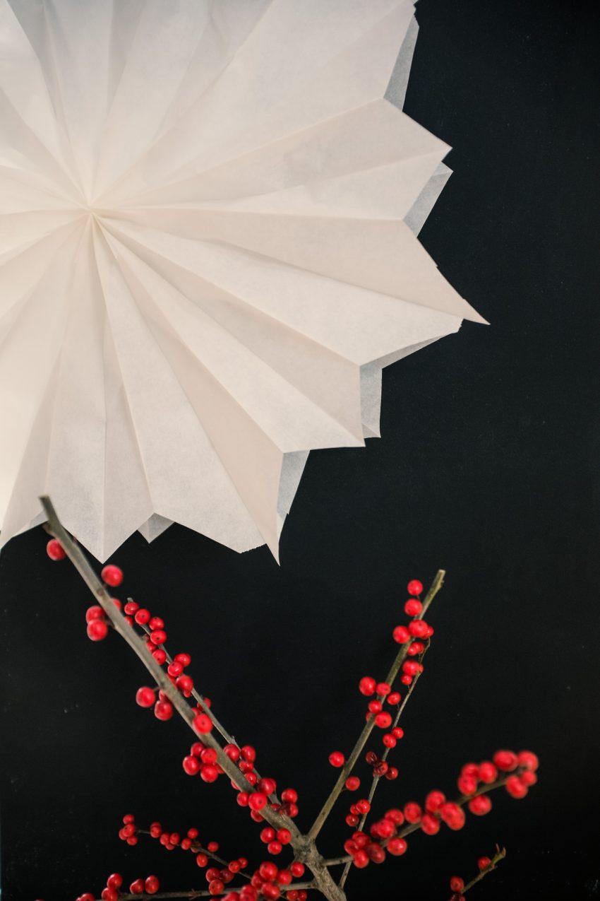 DIY Basteltipp für einen einfachen und schnellen Weihnachtsstern aus Butterbrottüten im Blog. Anjiko, Anjikoblog, Blog. Tipp, DIY, Basteln, Last Minute, Weihnachten, Weihnachtsstern, Basteltipp, Stern, weiß, minimalistisch, Minimalismus, xmas, Christmas, Weihnachtsdeko, 2016, schnell, einfach, günstig, Deko, Dekoration, Fensterschmuck, Weihnachtsschmuck, Blogger, Anja Krause, edel,